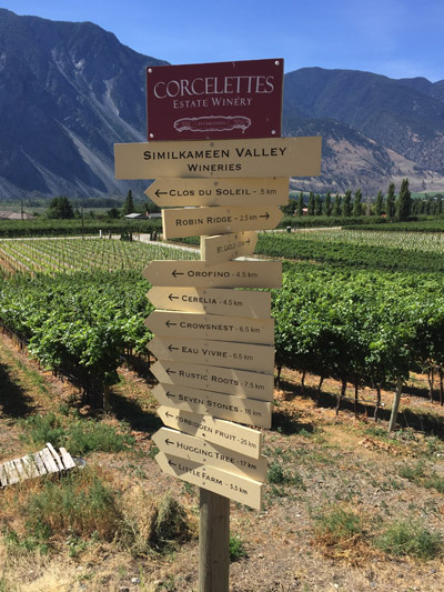 Roots_Vines_Inside_400_Valley_Sign